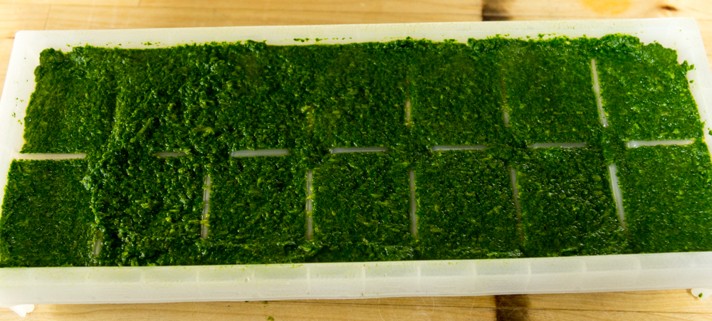 nettle-puree-in-trays